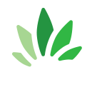 Colombia Cannabis Investor